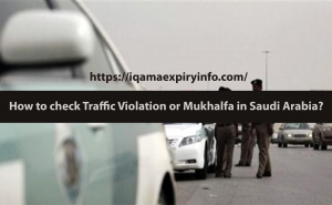 check traffic violation ksa